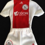 Mini Ajax thuisshirt 2008 - 2009